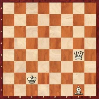 diagram_waar-staat-de-koning